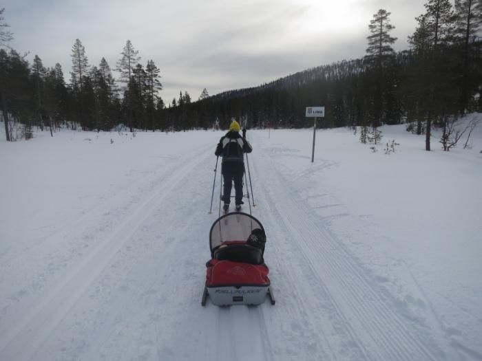 Längdåkning, längd, längdspår, skidspår, cross country, Kalven runt, Lindalen