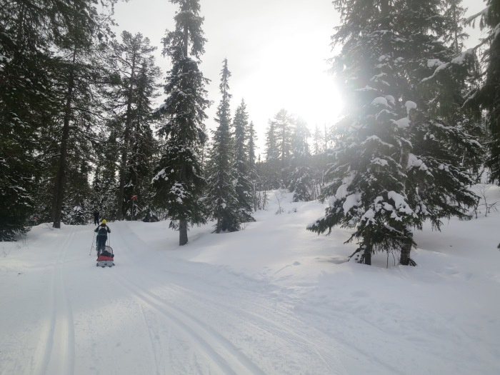 Kalven runt, Lindalens Fäbod, Lindalen, Tandådalen, skiing, skoter, skotersafari