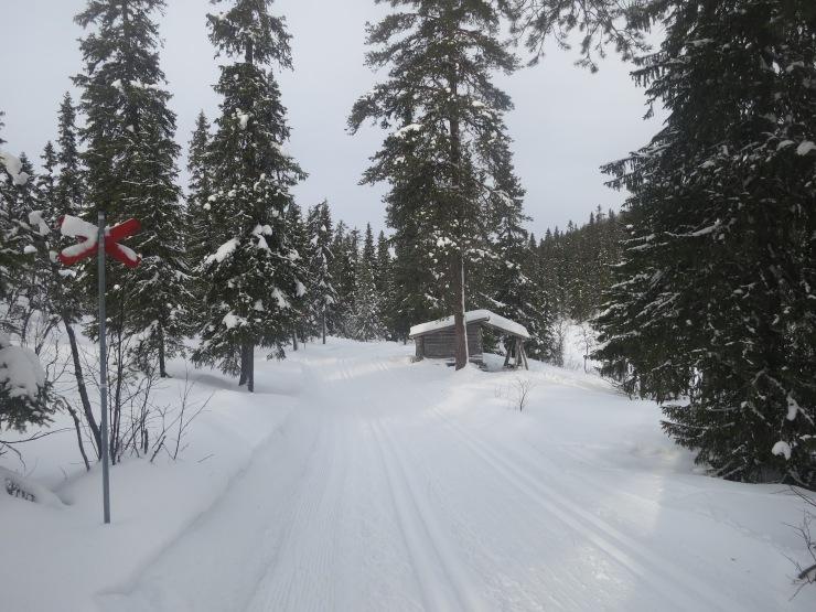 Kalven runt, Lindalens Fäbod, leder, leder i Sälen, Sälenfjällen, Scandinavian Mountains