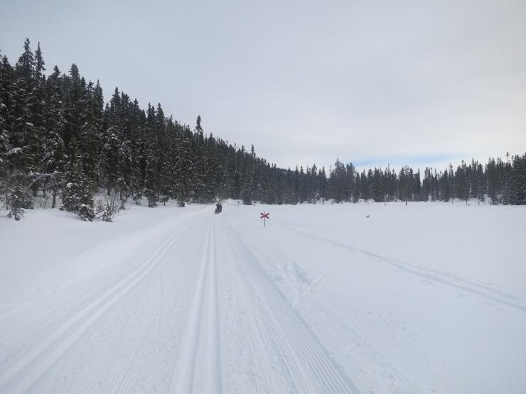 Skidspår, längdspår, längd, längdskidor, skiing, cross country, Scandinavian Mountains, Sälenfjällen