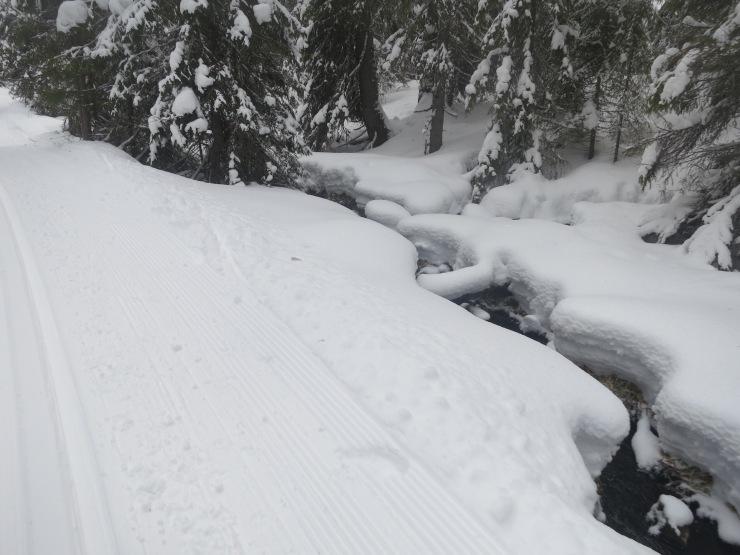 Lindalen, Lindalens Fäbod, fjäll, fjällnatur, Sälenfjällen, Scandinavian Mountains