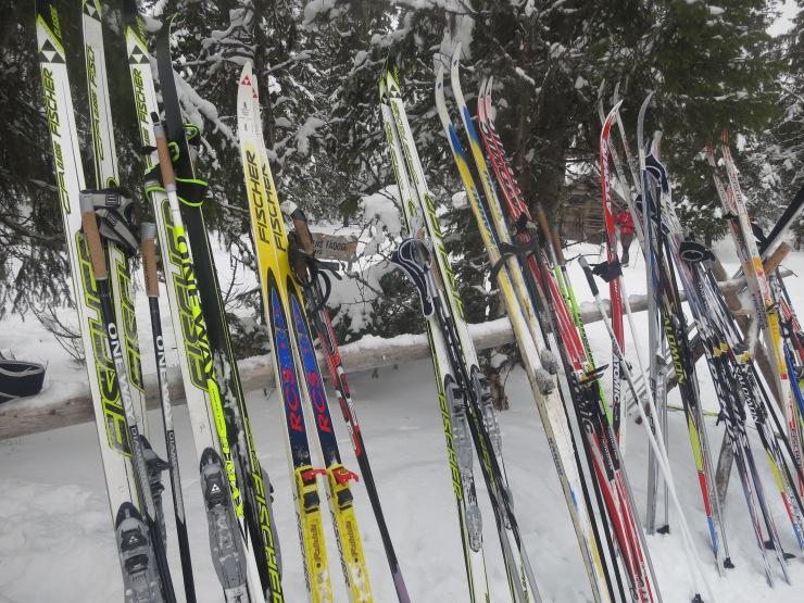 Längdåkning, skidor, skidspår, längdspår, cross country, skiing, ski, Tandådalen