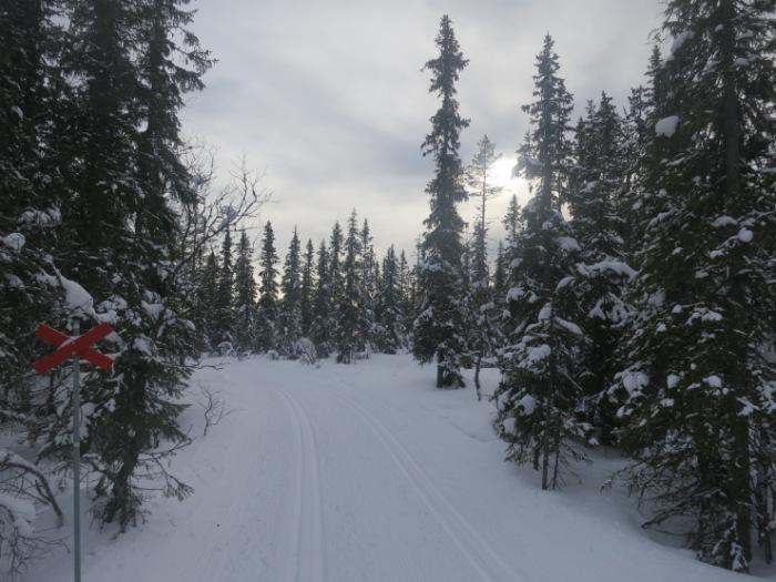 Längd, längdspår, skidspår, cross country skiing, skiing, Tandådalen