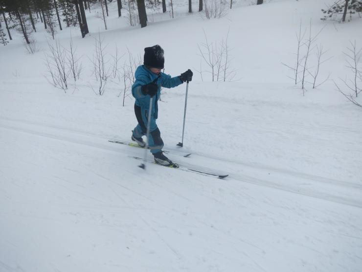 Skidor, skating, skiing, Kalven runt, längd, längdåkning, Tandådalen