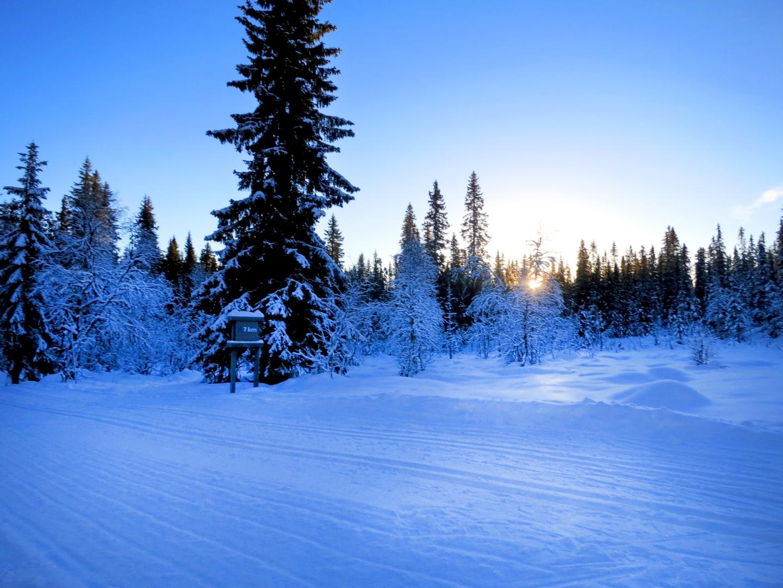 längd, längdskidor, kalven runt, skidor tandådalen, längdspår, öppna backar, öppna liftar, skipass, Skistar, Tandådalens Wärdshus, Tandådalen, Lindalen, vallabod, spårcentral, Sälen, snö sälen, snödjup, väder sälen