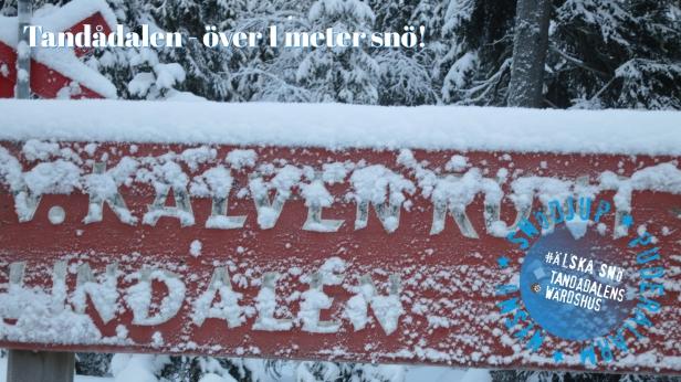 tandådalen, snö sälen, tandådalens wärdshus, jonas i sälen, afterski, snödjup sälen, snödjup tandådalen, tävling, öppna liftar, öppna backar, sälen, nysnö, puderalarm, snökanon